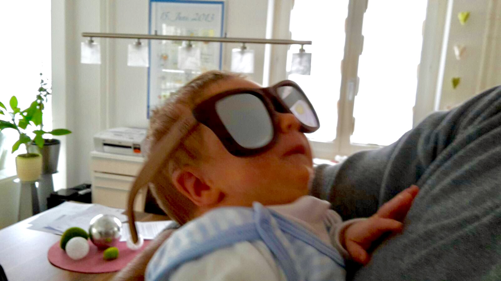 Bixi Sunglasses